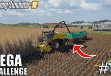 Harvesting poplar, Drying Grass | MEGA Challenge | Timelapse #10 | Farming Simulator 19